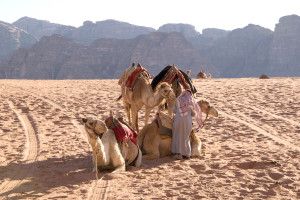 KameleWadiRum-web