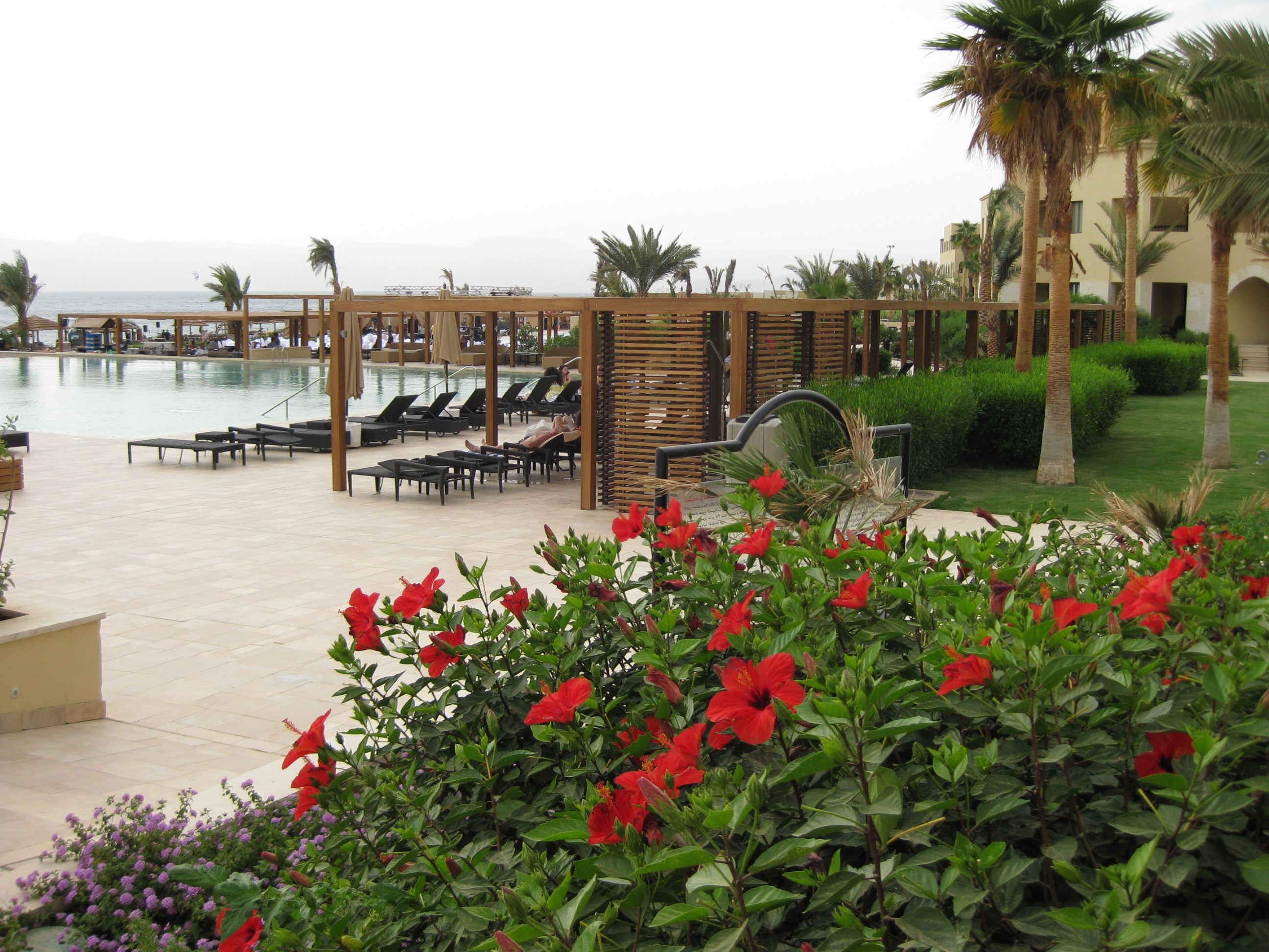 Aqaba_Hotel